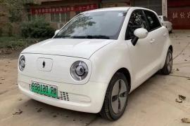 欧拉R1 2019款 欧拉R1 351km 灵智版抵押车